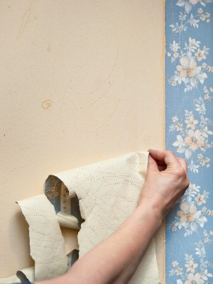 Wallpaper removal by Complete Painting Services.